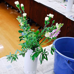2017年2月の花